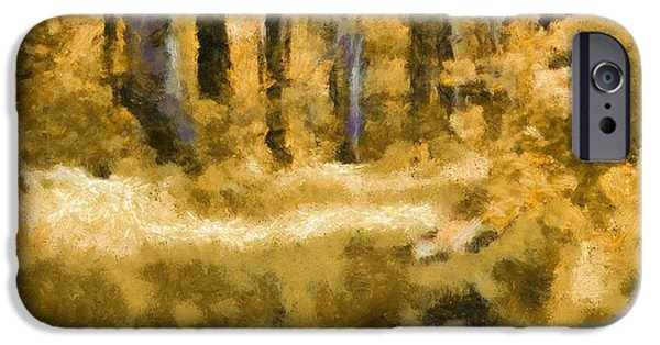 Pathway Mixed Media iPhone Cases - Forest Floor In Autumn iPhone Case by Dan Sproul