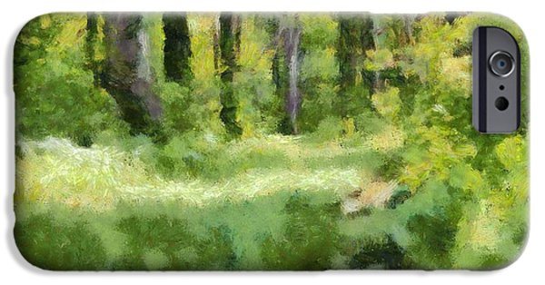 Pathway Mixed Media iPhone Cases - Forest Floor In Summer iPhone Case by Dan Sproul