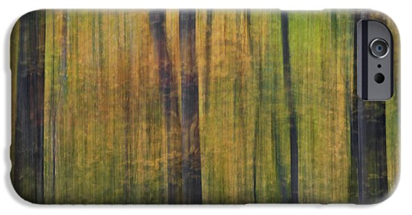 Fall iPhone Cases - Forest Glow iPhone Case by Susan Candelario