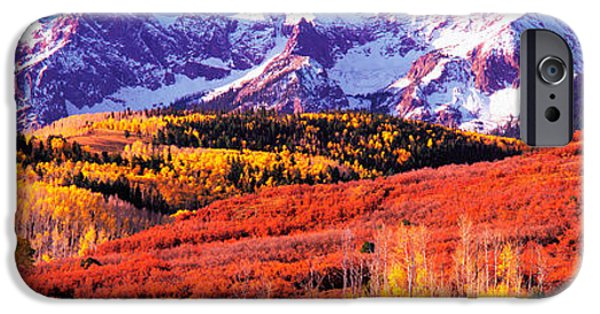 Snow Scene iPhone Cases - Forest In Autumn With Snow Covered iPhone Case by Panoramic Images