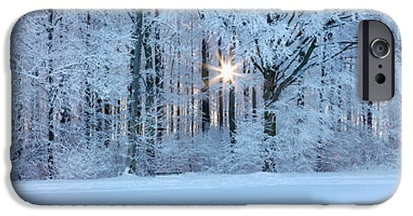 Winter Scene iPhone Cases - Forest In Winter At Sunrise, Swabian iPhone Case by Panoramic Images