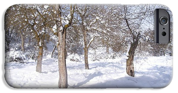 Winter Scene Pyrography iPhone Cases - Forest Ofconstantine iPhone Case by Boultifat Abdelhak badou