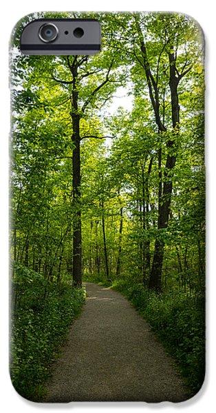 Seductive iPhone Cases - Forest Path iPhone Case by Georgia Mizuleva