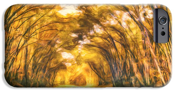 Autumn Road iPhone Cases - Forest Road iPhone Case by Joel Olives