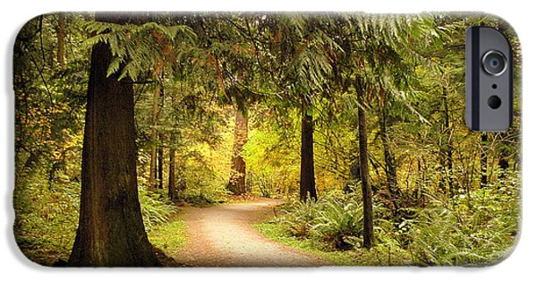 Pathway iPhone Cases - Forest Trail iPhone Case by Brian Chase