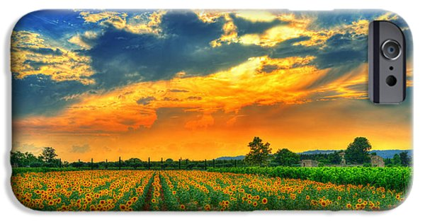 Provence Photographs iPhone Cases - Forever summer iPhone Case by Midori Chan