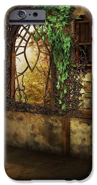 Bookcase iPhone Cases - Forgotten iPhone Case by Cheryl Young