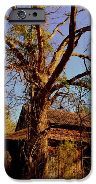 Old Barns iPhone Cases - Forgotten iPhone Case by Lisa Wooten