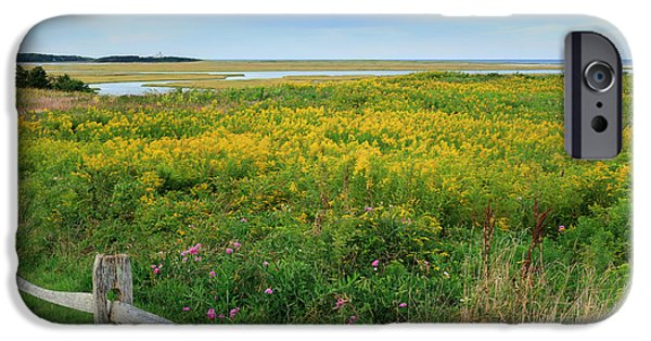 Cape Cod iPhone Cases - Fort Hill Area Cape Cod  iPhone Case by Bill  Wakeley