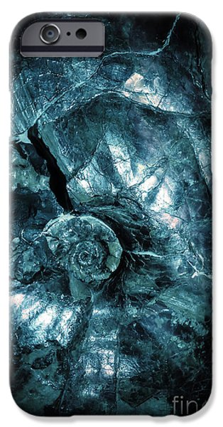 Fossil iPhone Cases - Fossil Blue Abstract iPhone Case by Edward Fielding
