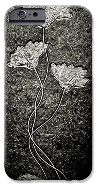 Triassic iPhone Cases - Fossilized Flowers iPhone Case by Dan Sproul