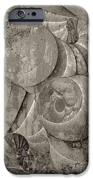 Fossilized Shell - B and W iPhone Case by Klara Acel