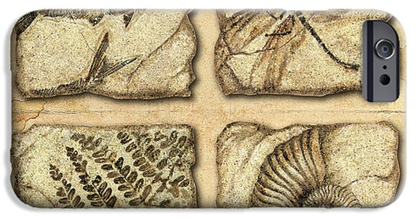 Jq iPhone Cases - Fossils iPhone Case by JQ Licensing