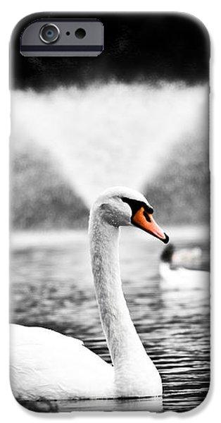 Fountain Swan iPhone Case by Shane Holsclaw