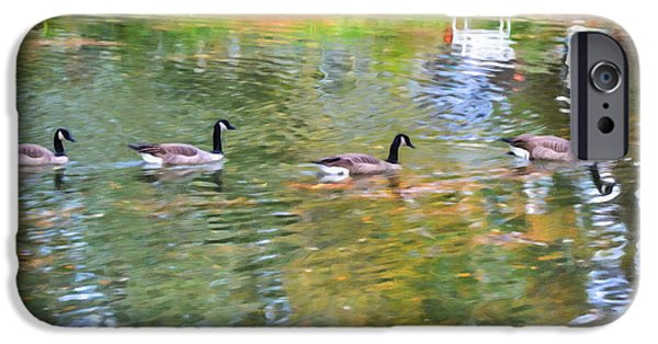 Canadian Geese Paintings iPhone Cases - Four Canadian geese in the water 1 iPhone Case by Lanjee Chee