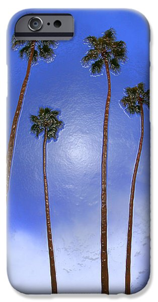 Heisler Park iPhone Cases - Four Palms 2 iPhone Case by Andre Aleksis