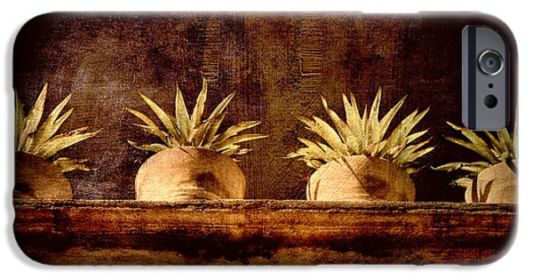 Plants iPhone Cases - Four Potted Plants iPhone Case by Carol Leigh
