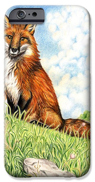 Field. Cloud Drawings iPhone Cases - Fox in the Meadow iPhone Case by Shelley Szajner