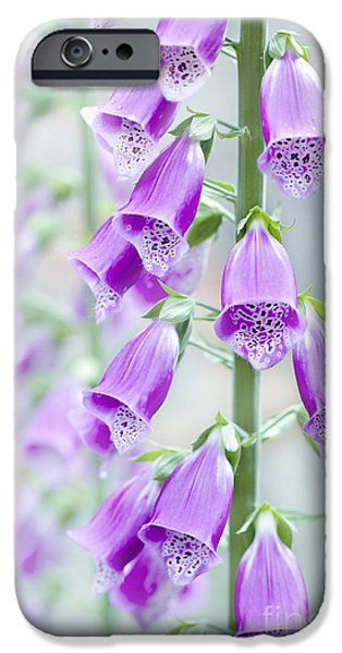 Foxglove Flowers Photographs iPhone Cases - Foxglove iPhone Case by Jacky Parker