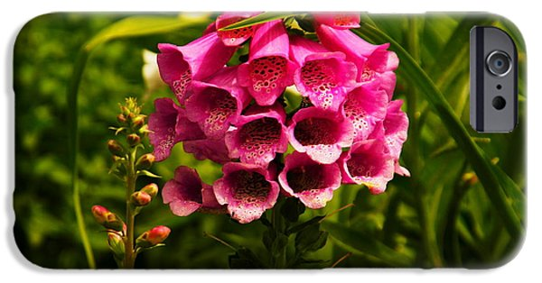 Foxglove Flowers Photographs iPhone Cases - Foxglove iPhone Case by Jeff  Swan