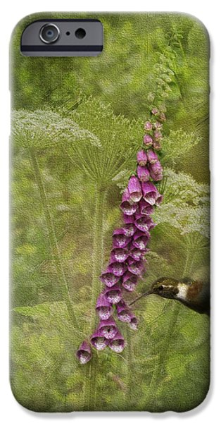 Foxglove Flowers Photographs iPhone Cases - Foxglove Queen Anns Lace and the Hummingbird iPhone Case by Diane Schuster