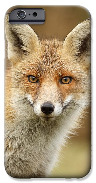Juveniles iPhone Cases - Foxy Face iPhone Case by Roeselien Raimond
