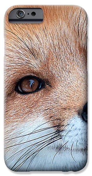 Foxy Lady iPhone Case by Bianca Nadeau