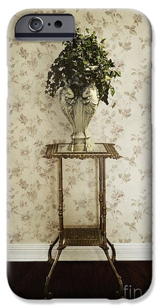 Foyer Living iPhone Case by Margie Hurwich