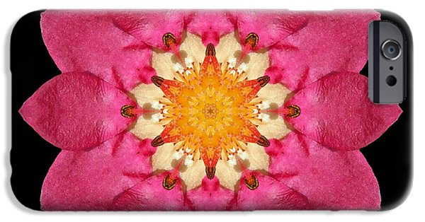 David J Bookbinder iPhone Cases - Fragaria Flower Mandala iPhone Case by David J Bookbinder