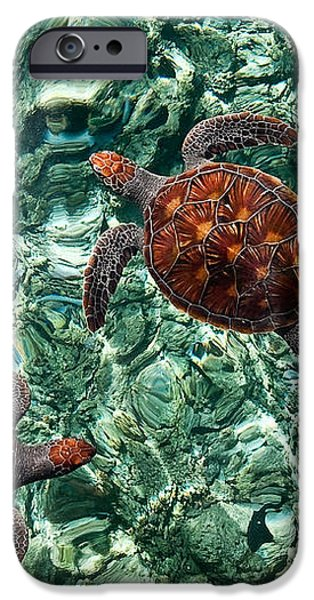 Fragile Underwater World. Sea Turtles in a Crystal Water. Maldives iPhone Case by Jenny Rainbow