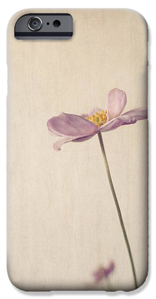 Fragility iPhone Cases - Fragility iPhone Case by Amy Weiss