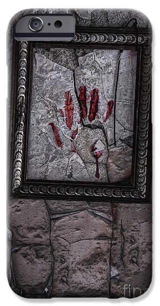 Framed iPhone Case by Margie Hurwich
