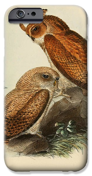 Drawing Of Eagle iPhone Cases - Frasers Eagle Owl iPhone Case by J G Keulemans