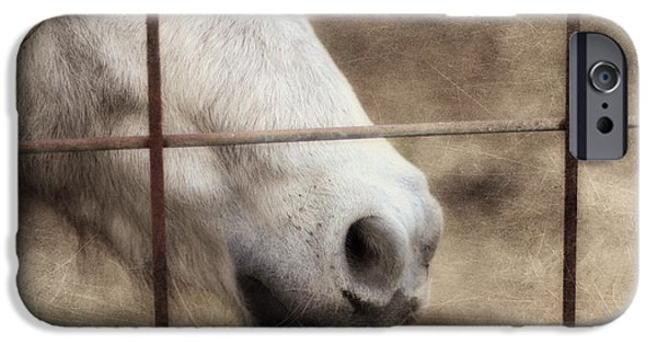 Horse Photographs iPhone Cases - Freckles iPhone Case by Amy Tyler