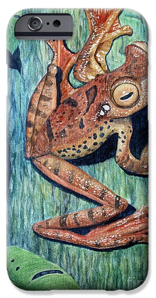 Flying Frog iPhone Cases - Freckles Tree Frog iPhone Case by Joey Nash