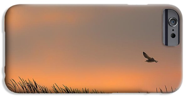 Sea Birds iPhone Cases - Free iPhone Case by Bill  Wakeley