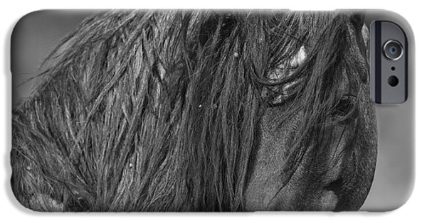 Horse Photographs iPhone Cases - Freedom Close Up iPhone Case by Carol Walker