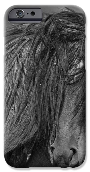 Freedom Close Up iPhone Case by Carol Walker