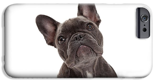 Little iPhone Cases - French Bulldog Closeup iPhone Case by Susan  Schmitz