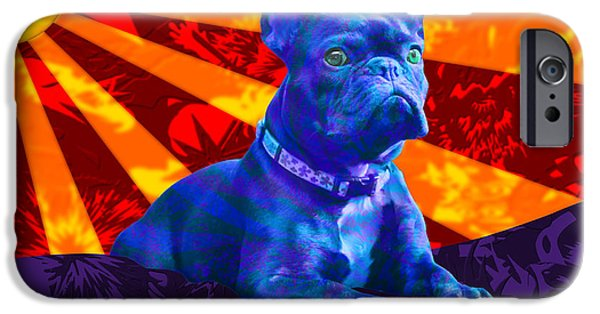 Puppies iPhone Cases - French Bulldog iPhone Case by Sean Corcoran