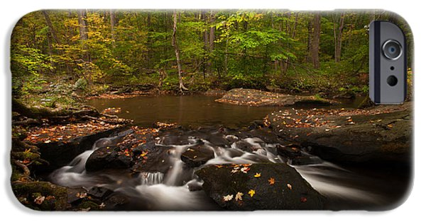 States iPhone Cases - French Creek Autumn iPhone Case by Mike Potts Photography