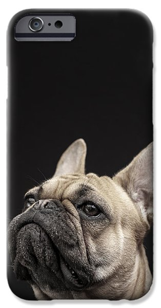 French Bulldog iPhone Cases - Frenchie iPhone Case by Samuel Whitton
