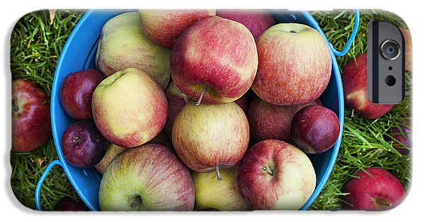 Pail iPhone Cases - Fresh apples iPhone Case by Elena Elisseeva