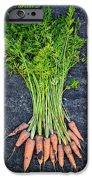 Fresh carrots from garden iPhone Case by Elena Elisseeva