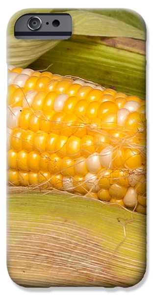 Fresh Corn at Farmers Market iPhone Case by Teri Virbickis