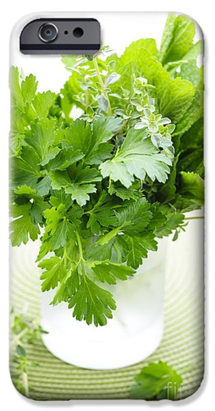 Freshness iPhone Cases - Fresh herbs in a glass iPhone Case by Elena Elisseeva