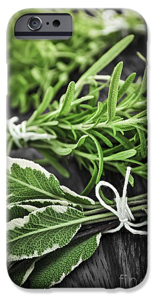 Herbs iPhone Cases - Fresh herbs in bunches iPhone Case by Elena Elisseeva