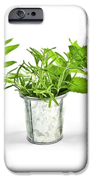 Fresh herbs in pots iPhone Case by Elena Elisseeva