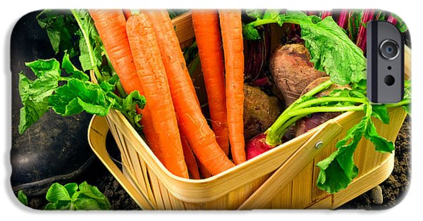 Fresh Produce iPhone Cases - Fresh picked healthy garden vegetables iPhone Case by Edward Fielding