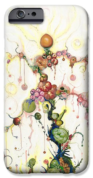 Fried Pink Tomatoes iPhone Case by Douglas Fromm